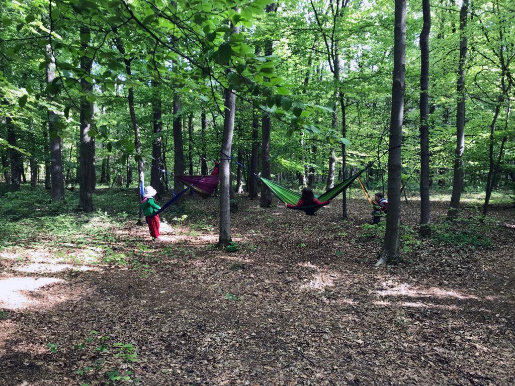 Kinder im grünen Wald mit Hängematte
